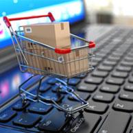 Les français et le e-shopping